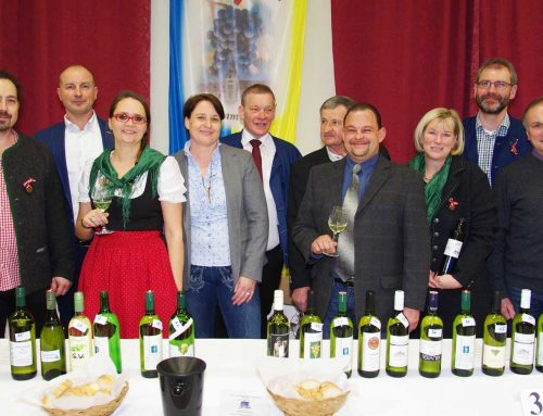 Jungweinpräsentation Weinbauverein Brunn